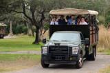 De safari