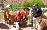 Srh con niñitos Peruanos
