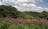 A view of the Malvern Hills, Worcestershire.