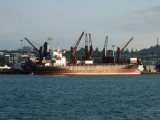 Cargo Ship CHEMING