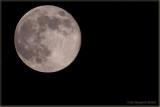Summer Mooning