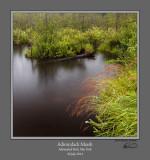 Adirondack Marsh.jpg