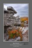 Bear Rocks Crevice Fall 2014.jpg