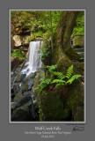 Wolf Creek Falls 3 NRG.jpg