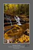 Keeney Creek Fall Swirl.jpg