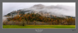 Skagit Valley Pastoral.jpg