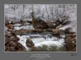 Lower Wolf Creek Rapids.jpg