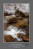 Lower Wolf Creek.jpg