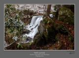Wolf Creek Falls Pano 2 Side.jpg