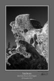 Sandstone 1 BW Bear Rocks.jpg