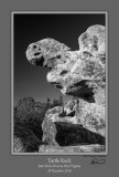 Turtle Rock BW Bear Rocks.jpg