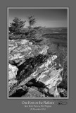 One Foot Platform Bear Rocks BW.jpg