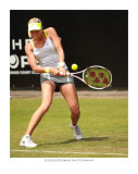 ongoing: Topshelf & Unicef Open grasscourt tennis championships 2010-2011-2013