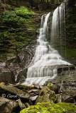 Bucktail Falls After a Rain