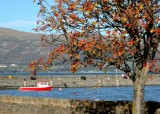 Autumn in Carlingford