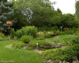 Backyard Garden of the Fletcher Wildlife Garden