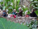 botanical indoor crowd.jpg