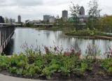botanical pond.jpg