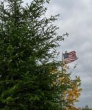 flag and fall.jpg