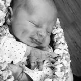 Levi -That little Rosser smirk already