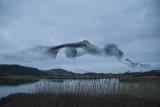 Starling  murmuration  Conwy RSPB