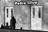 The Silvas Are Coming Home