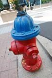2T1U6993.jpg - Ottawa, ON, Canada
