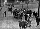 1914 - Belgian refugees
