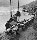 Trackers on the Yangtze