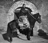 1909 - A typical Qli pony