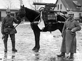 Germans with horse mounted with captured Russian machine gun