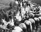 1914 - British cavalry regiment resting their horses