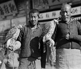 1917 - Men holding hawks