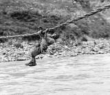 c. 1918 - Rope bridge