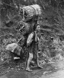 1890's - Woman delivering charcoal