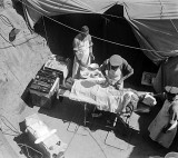Surgery in progress, Casualty Clearing Station, Gallipoli