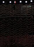 light waves.jpg