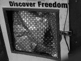 discover freedom.jpg