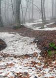 old snow.jpg