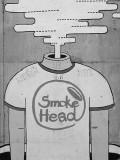 smoke head.jpg