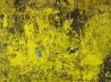 yellow gray and black.jpg