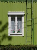 window and ladder.jpg