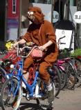 bear on a bike.jpg
