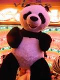 vegas panda.jpg