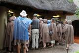 4915 Two weeks in South Africa - IMG_6446_DxO Pbase.jpg