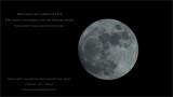 Dec 24th Moon