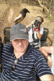 Rufous treepie and raymond with Peggy the Photographer 600 x 900 1200 web  .jpg
