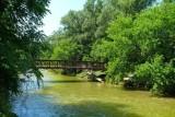 Summer, Footbridge and Humber River, Rowntree Mills Park, Toronto, Ontario