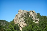 Black Hills, Near Mount Rushmore, South Dakota