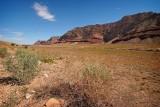 Near Glen Ganyon Dam, Page, Arizona